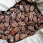 Another reason to guzzle cocoa; How Flavanol helps your brain and body