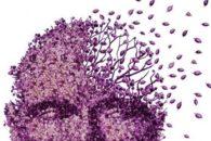 Diagnosis of Alzheimer's disease using Vibrational spectroscopy