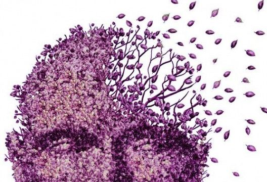 Diagnosis of Alzheimer's disease using Vibrational spectroscopy