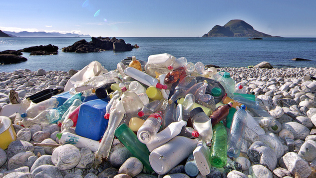 Plastic Eaters; the biological way towards waste management