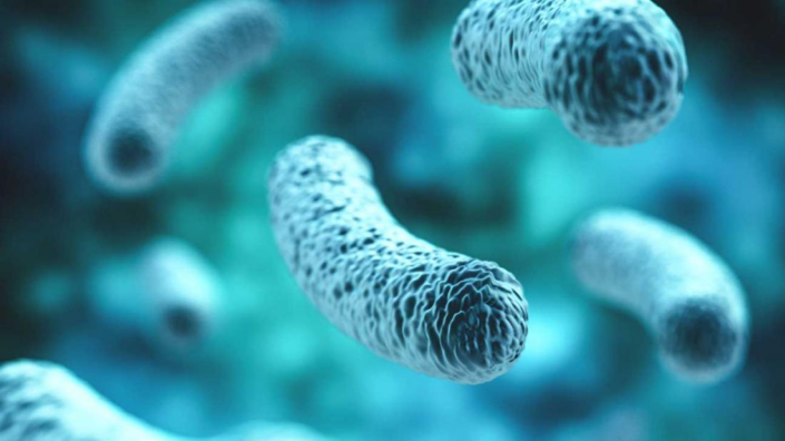 Probiotics can offer cure for Colorectal cancer