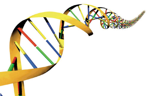 Using DNA as a diagnostic tool