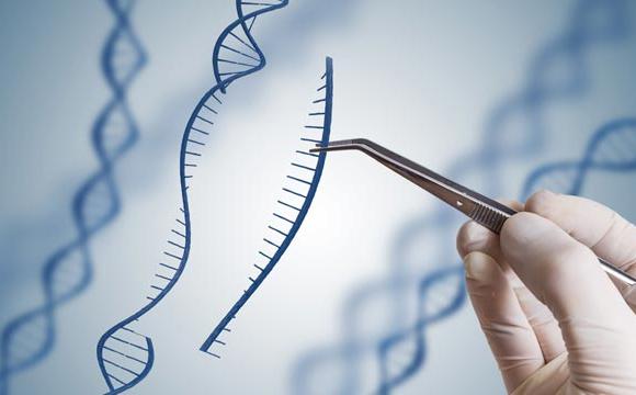 CRISPR-Cas9 gene editing
